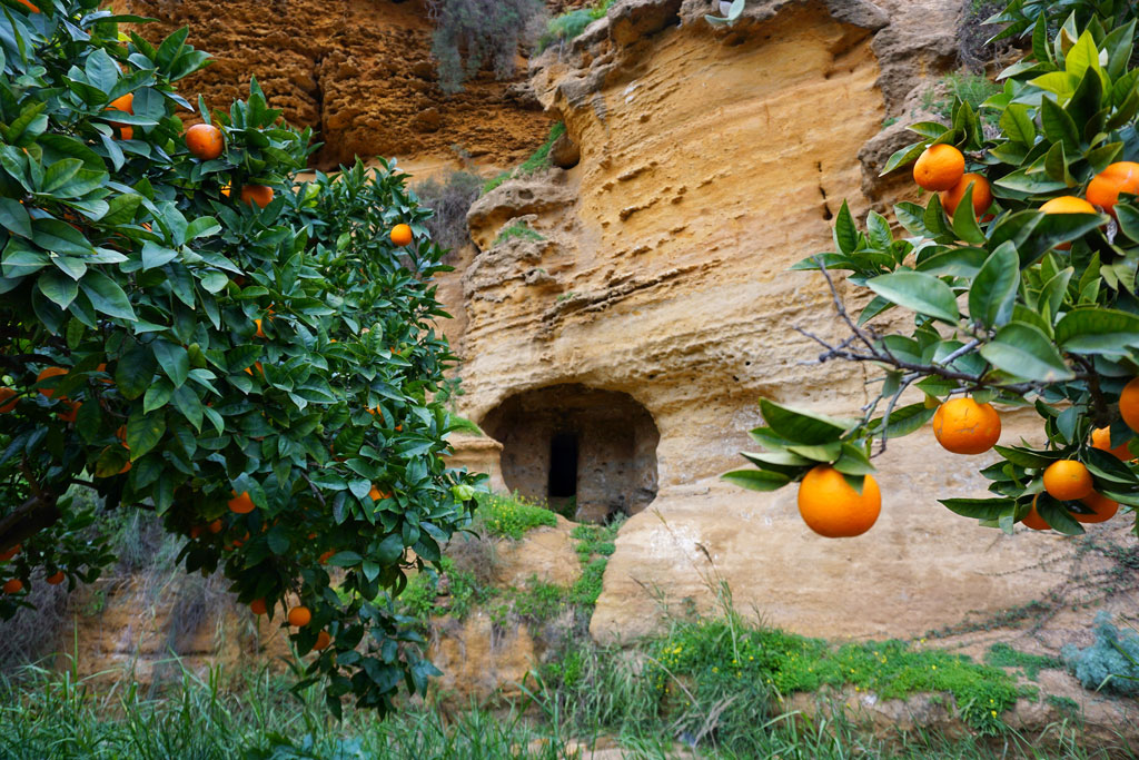 La Kolymbethra della Valle dei Templi di Agrigento
