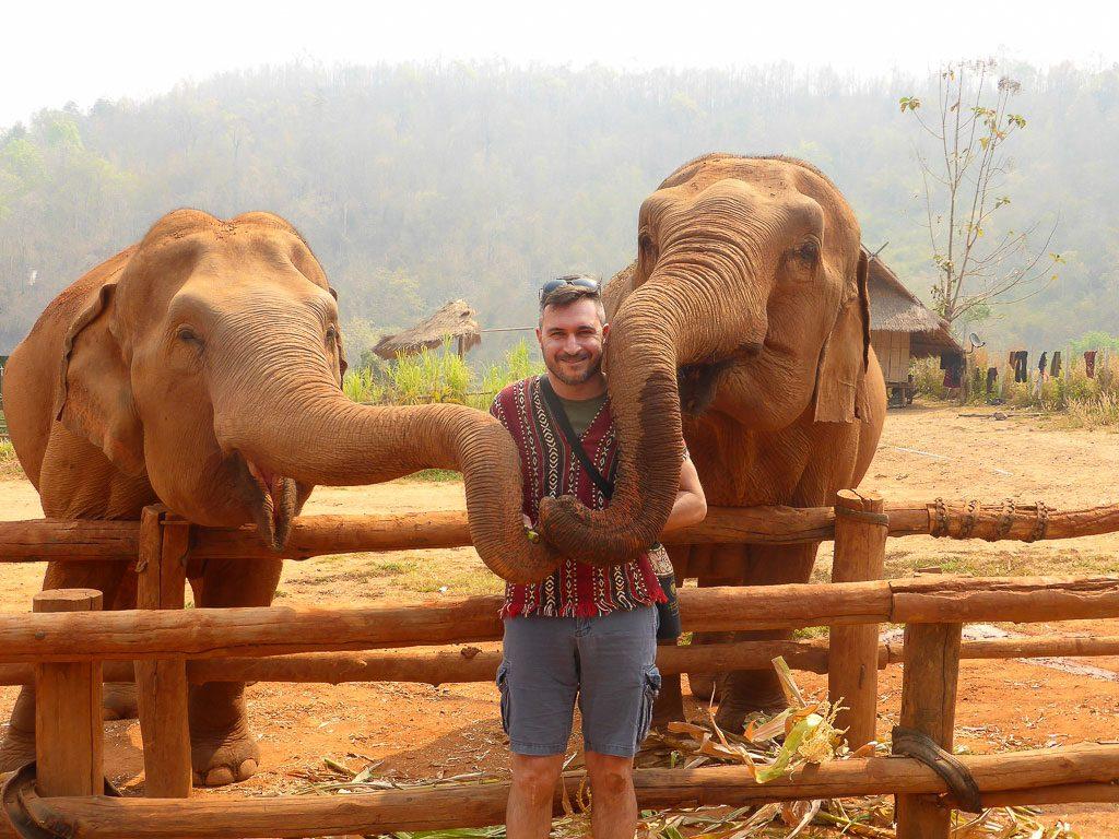 Elefanti Thailandia Untrolleyperdue