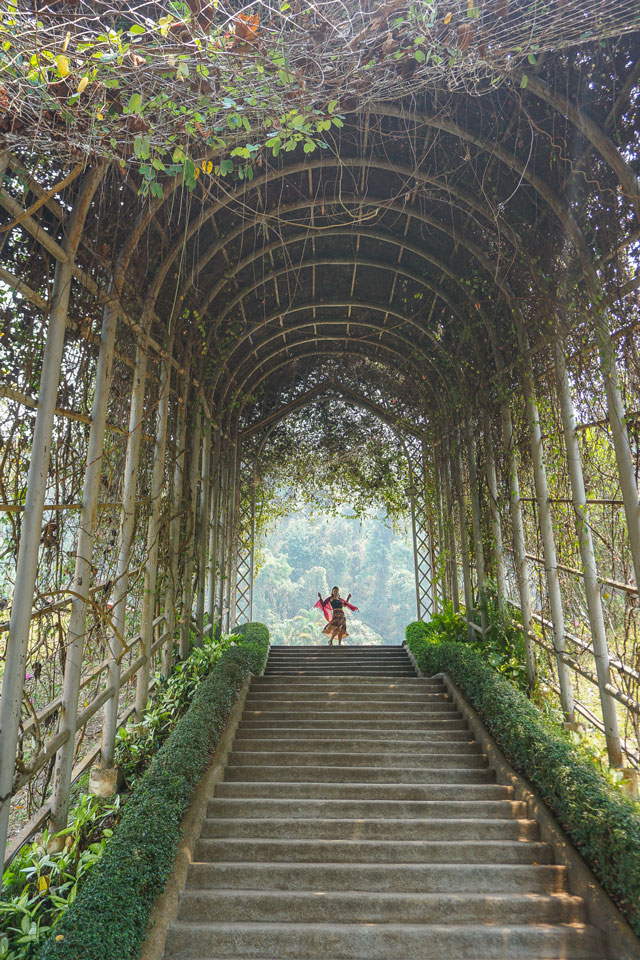 queen sirikit botanical garden