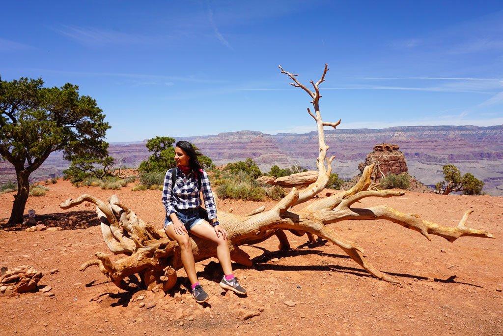 cedar ridge point grand canyon
