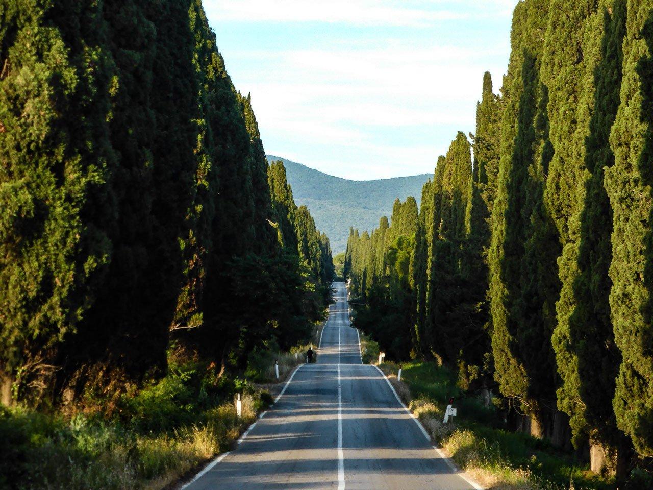 viale dei cipressi bolgheri