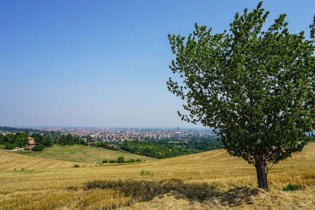 trekking parco dei gessi bolognesi