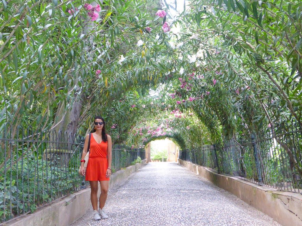 paseo de los cipreses